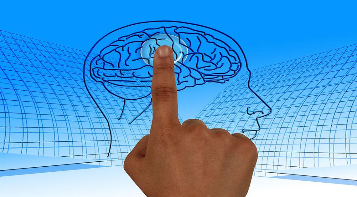 Как правильно тренировать свой мозг: 4 совета