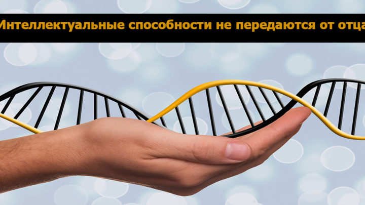 Удивительные факты про генетику
